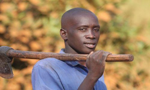 Zdjęcie UGANDA / Murchison Falls NP / M / Drwal - konkurs