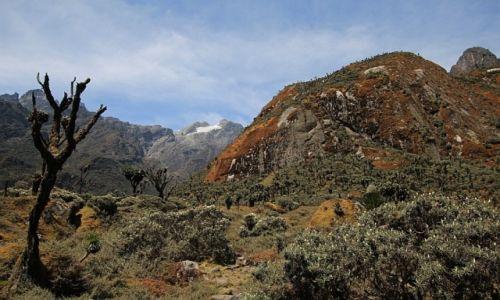 Zdjecie UGANDA / Rwenzori Mountains / Rwenzori Mountains / Rwenzori National Park - widok na Mt. Stanley (konkurs)
