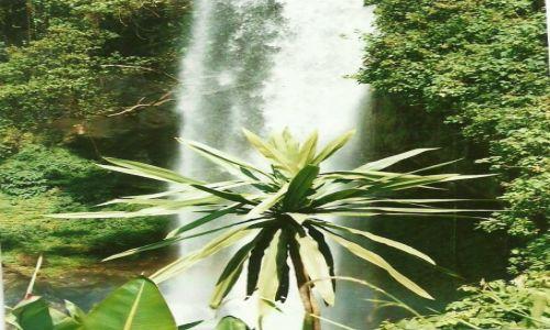 Zdjęcie UGANDA / Wsch. Uganda / Mbale / Wodospady Sipi