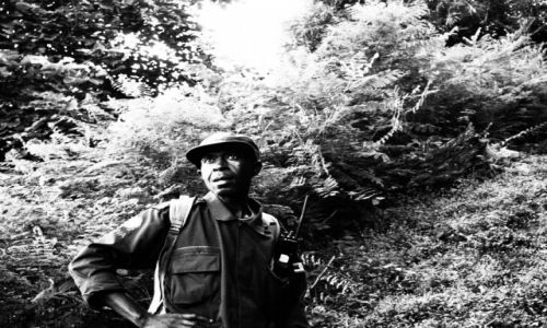 Zdjecie UGANDA / Bwindi / Buchoma / strażnik UWA