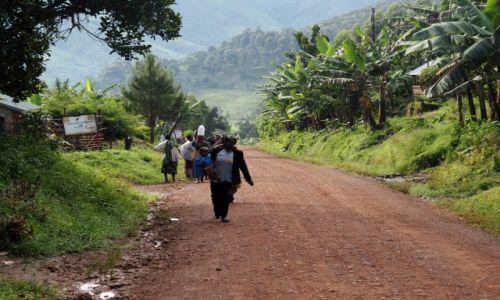 Zdjecie UGANDA / Bwindi / Buchoma / droga przez dżu