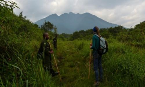 Zdjecie UGANDA / Poludniowa Uganda / Park Narodowy Mgahinga / Dluga droga prz