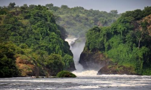Zdjecie UGANDA / Masindi / Murchison Falls National Park / Wodospady Murchisona na Nilu Wiktorii