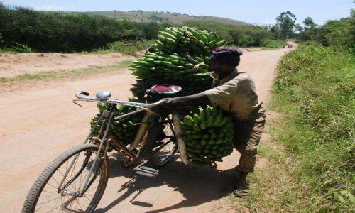 Zdjecie UGANDA / Bakijurura / droga / Dostawca bananów