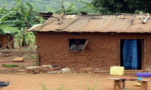 Zdjecie UGANDA / Fort Portal / przy drodze / Przy drodze...