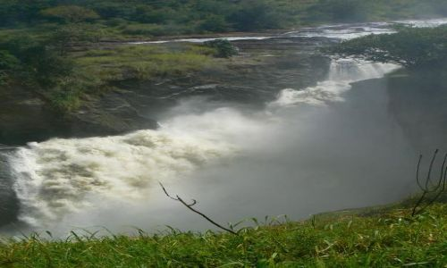 Zdjecie UGANDA / - / - / Murchison Falls NP