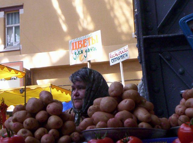 Zdjęcia: Targ w Kijowie, Babcia ziemniak, UKRAINA