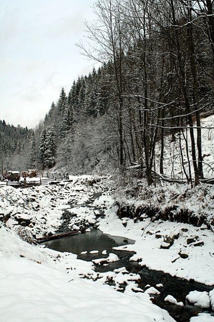 Zdjęcia: Bereżnica, Huculszczyzna, Zimowo, UKRAINA
