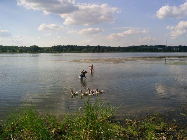 Zdjęcia: Meżyriv, podole, krajobraz, UKRAINA