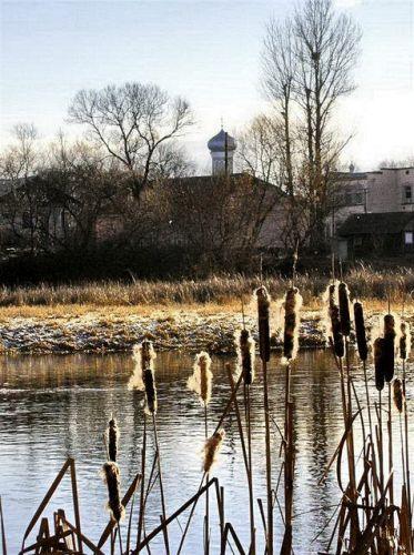 Zdjęcia: okolice Winnicy, na brzegu rzeki styr, UKRAINA