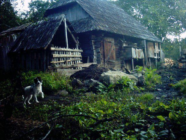 Zdjęcia: Synewir, Karpaty Ukraińskie, Ukraińska wieś, UKRAINA