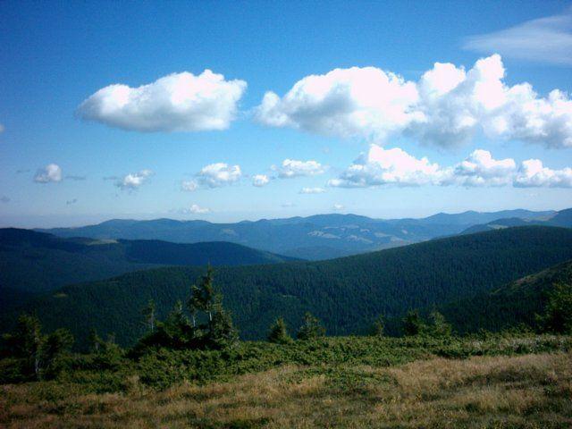 Zdjęcia: Czarnohora, Karpaty Ukraińskie, Górski krajobraz, UKRAINA