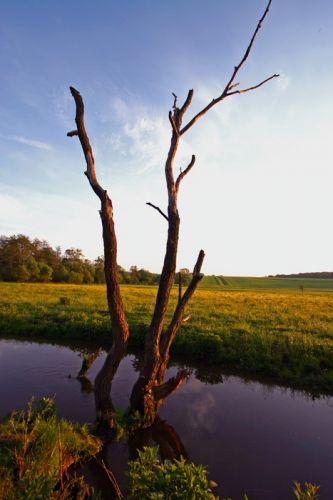 Zdjęcia: Bajkiwscy, widoczek, UKRAINA