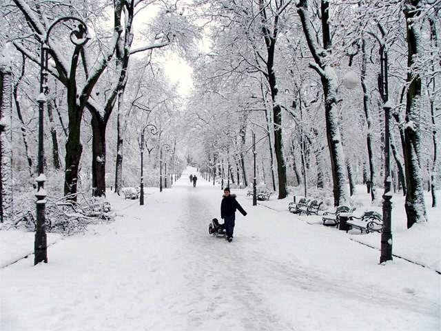 Zdjęcia: Lwów, zima w parku im. Franka, UKRAINA