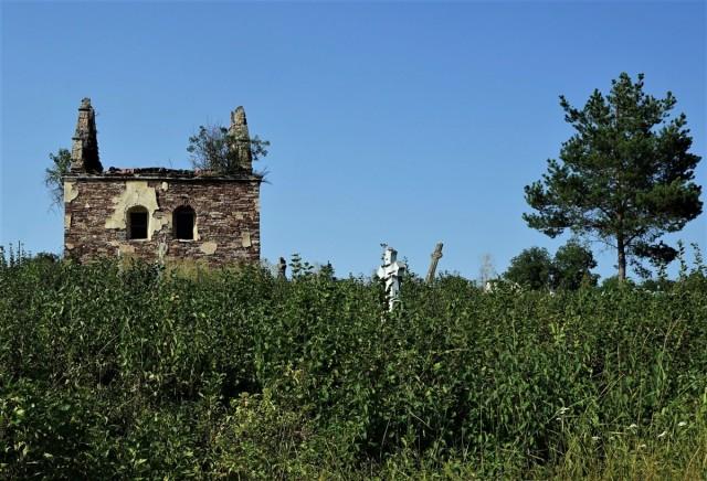 Zdjęcia: Czerwonogród, Obwód Tarnopolski, Cmentarz, UKRAINA