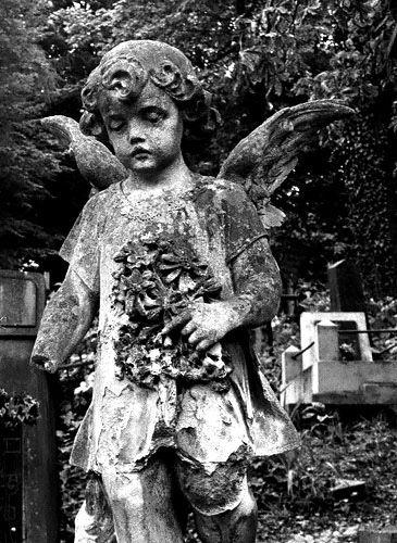 Zdjęcia: Cmentarz Łyczakowski, Lwów, pamieć, UKRAINA