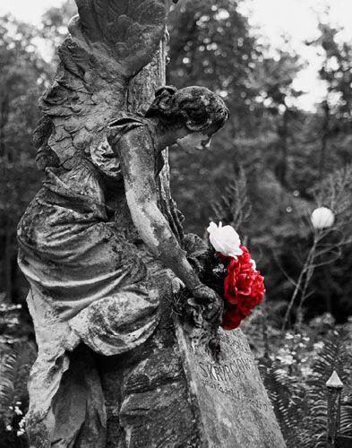 Zdjęcia: Cmentarz Łyczakowski, Lwów, biało - czerwone, UKRAINA