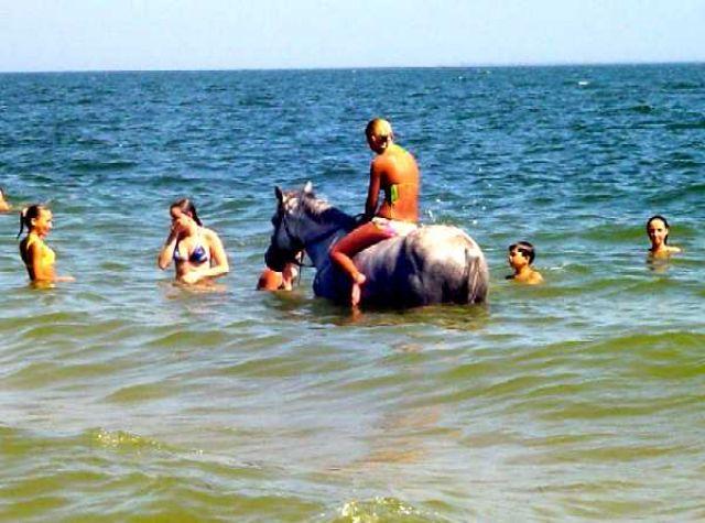 Zdjęcia: Kercz, Krym, Kąpiel z koniem na plaży Arszyncewo w Kerczu, UKRAINA