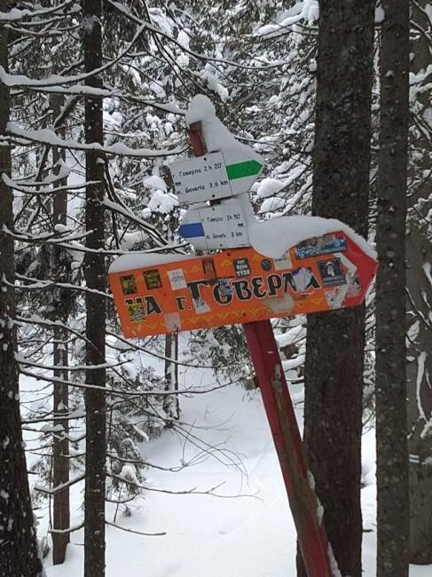Zdjęcia: Wspinania na Gowerłę, Karpaty, Karpaty Ukraiński, UKRAINA