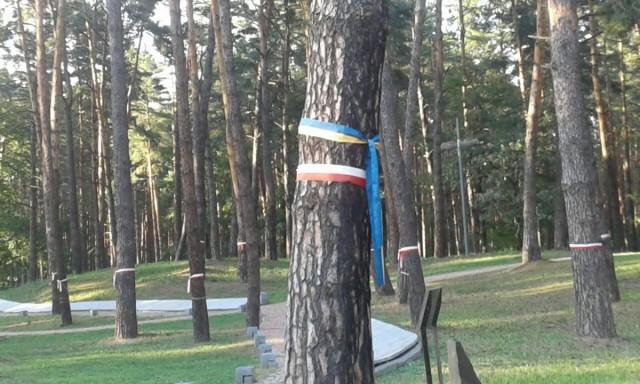 Zdjęcia: Bykownia, Kijów, Memoriał Bykownia-4, UKRAINA