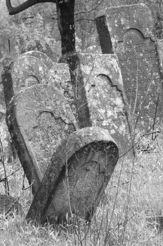 Zdjęcia: Krzemieniec, cmentarz żydowski, UKRAINA