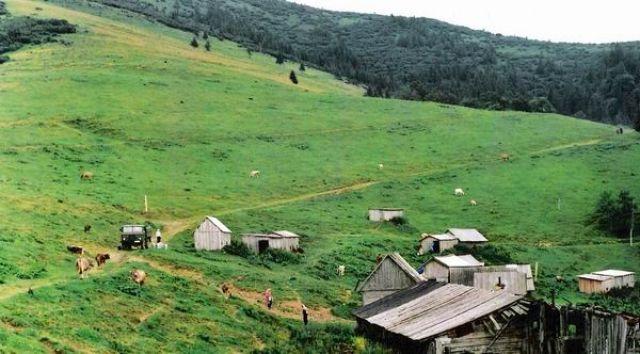 Zdjęcia: Czarnohora, Karpaty, Wioska pasterska, UKRAINA