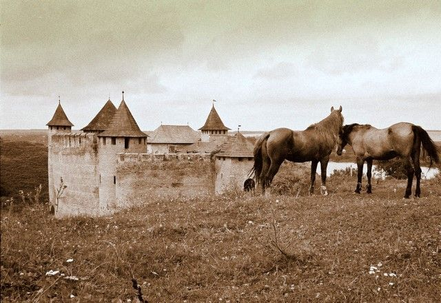 Zdjęcia: Chocim, Konie Husseina Paszy, UKRAINA