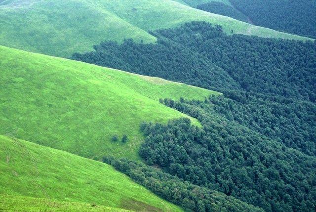 Zdj�cia: Po�onina Bor�awa, Karpaty Wschodnie, Irlandia wysiada!, UKRAINA