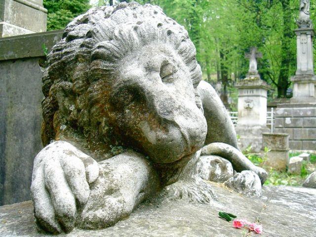 Zdj�cia: Lw�w, Cmentarz Orl�t Lwowwskich2, UKRAINA