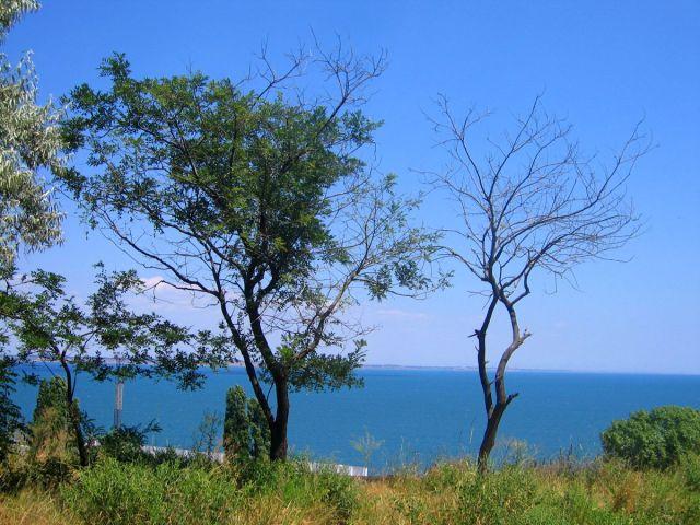 Zdjęcia: Odessa , Wybrzeże Morza Czarnego , Lazurowe morze, UKRAINA