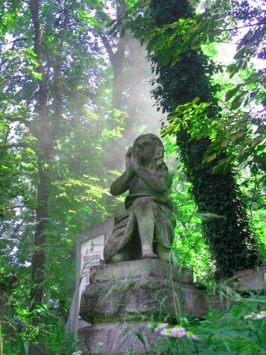 Zdjęcia: Lwów, Łyczaków , Zachodnia Ukraina , Zamyślone anioły...., UKRAINA