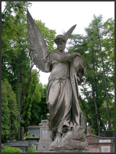 Zdj�cia: Lw�w - Cmentarz �yczakowski, K r e s y, Anio�, UKRAINA