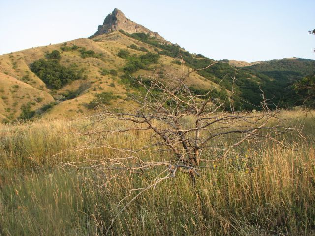 Zdj�cia: zmierzaj�c w kierunku Koktebel, Rezerwat Kara - dag, UKRAINA