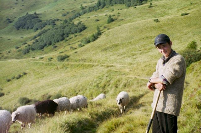 Zdjęcia: Świdowiec, Pokucie, Pasterz, UKRAINA