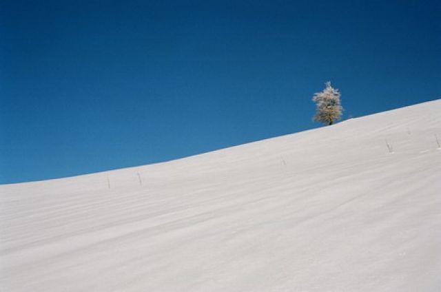 Zdjęcia: Pikuj, Karpaty, Góry, UKRAINA