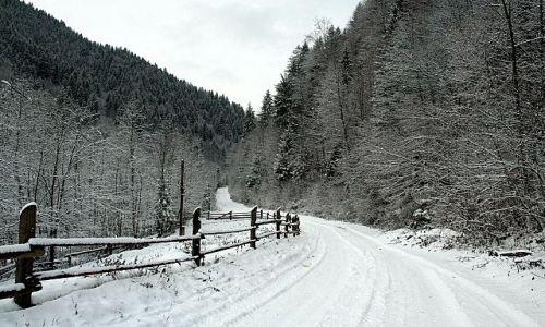 Zdjecie UKRAINA / Huculszczyzna / Bereżnica / Snieżno
