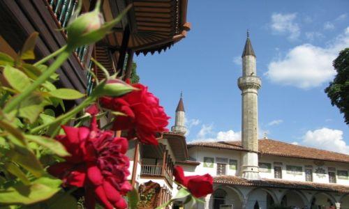 Zdjecie UKRAINA / Krym / Bakczysaraj / Róża i minaret