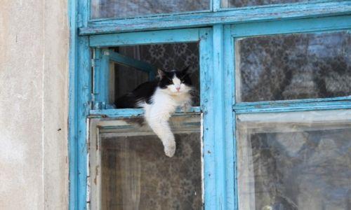Zdjęcie UKRAINA / Krym / Sewastopol /