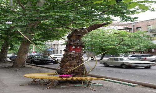 Zdjecie UKRAINA / - / Dniepropietrowsk / Drzewo rzeźba przed teatrem dla dzieci