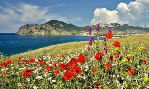 Zdjecie UKRAINA / Krym / Morze Czarne / Krymskie widoki