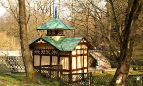 Zdjęcie UKRAINA / obwód lwowski / Truskawiec / źródło Józia