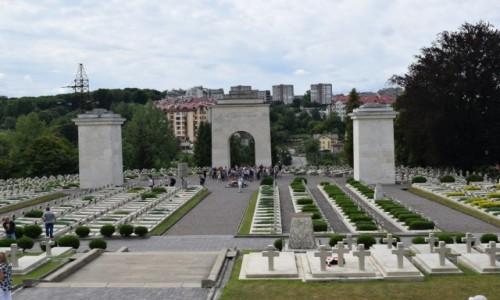 Zdjecie UKRAINA / Lw�w / Lw�w / Cmentarz Orl�t