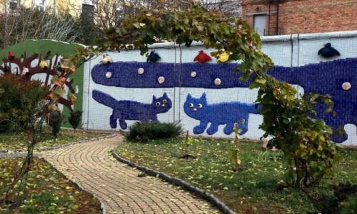 Zdjecie UKRAINA / Kijów / Aleja Pejzażowa / Kocie ścieżki