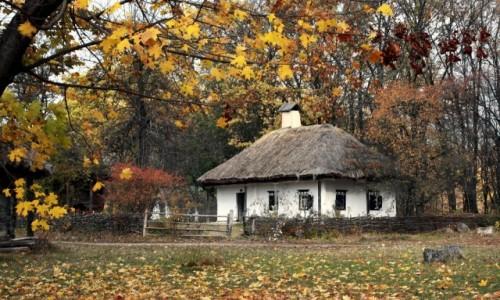 UKRAINA / Kijów / Muzeum narodowej architektury, Pirogowo / Jesień