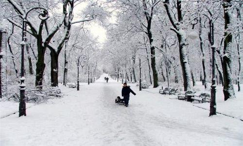 Zdjecie UKRAINA / brak / Lw�w / zima w parku im