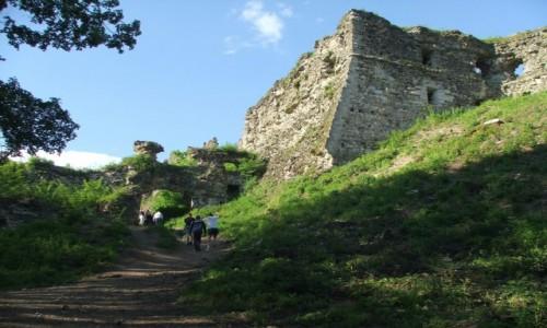 UKRAINA / Zakarpacie / Chust / Ruiny średniowiecznego zamku