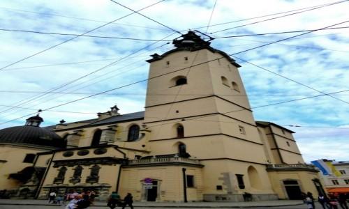 Zdjecie UKRAINA / - / Lwów / Miasto trolejbusów
