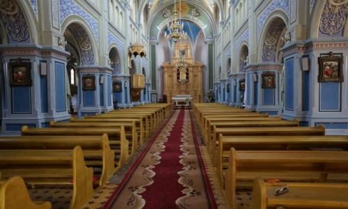 Zdjęcie UKRAINA / Obwód iwanofrankiwski / Kołomyja / Kościół pw. św. Ignacego Loyoli, wnętrze