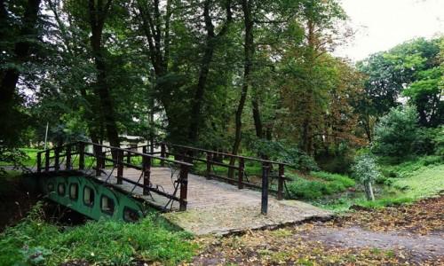 Zdjecie UKRAINA / Zółkiew / Park / Mostek nad Świnią