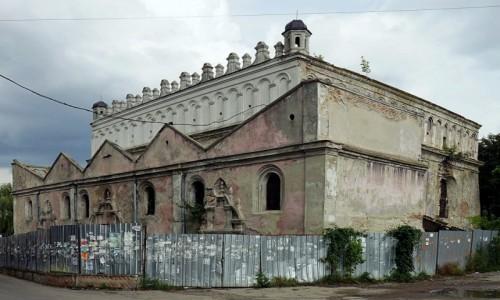 Zdjęcie UKRAINA / Obwód Lwowski / Żółkiew / Synagoga, w remoncie
